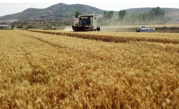 免交通行费!山东省今年的农机跨区作业需要注意这些!